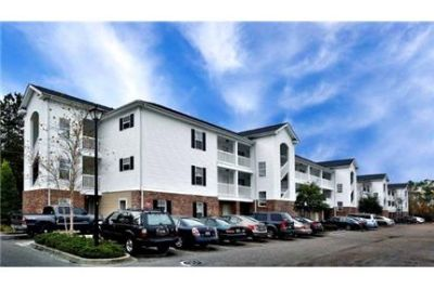 1 bedroom - STUDENT HOUSING - Spacious 2 bed room apartment with large living room. Pet OK!