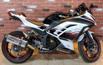 2014 Kawasaki Ninja 300 ABS SE Sport Motorcycles Dimondale, MI