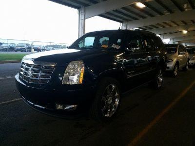 2009 Cadillac Escalade ESV Platinum Edition (Blue Chip)