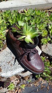 Have had many compliments on my shoe Planters so I decided to make some see if I could sell