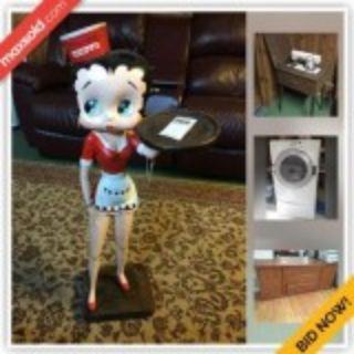 Ottawa Downsizing Online Auction - Wilhaven Drive
