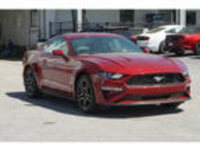 2019 Ford Mustang Red, new