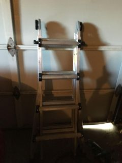 Worlds greatest all in one ladder