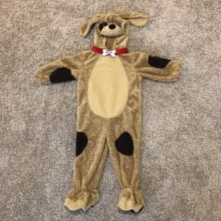 24m Koala Baby puppy Halloween costume - AWESOME QUALITY!