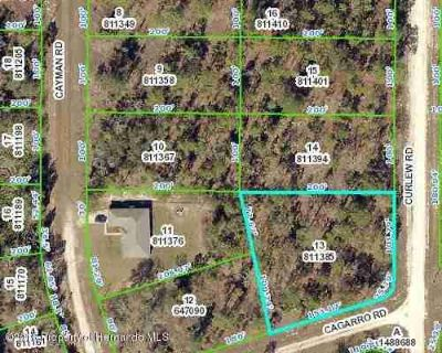 0000 Cagarro Road Brooksville, Build your dream home on this