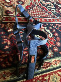 Kong brand harness for M dog