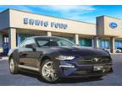 new 2019 Ford Mustang for sale.