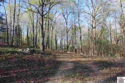 93 Springhill Dr. Eddyville, Six wooded lots in Driftwood