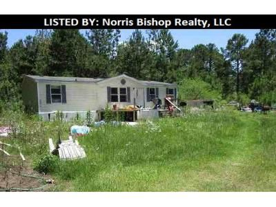 3 Bed 2 Bath Foreclosure Property in Newton, GA 39870 - Water St