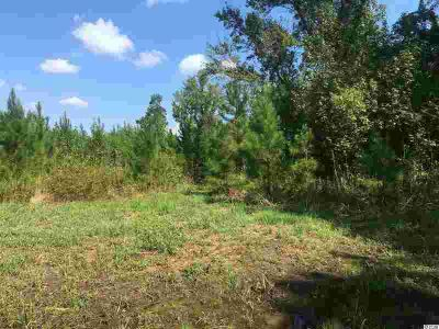 2 W Bragdon Rd. Lake City, Approximatley 5 acres of cleared