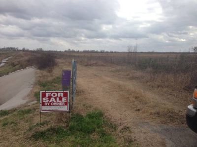30 acres (Manvel)