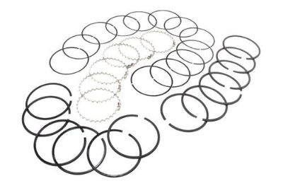 Purchase Omix-Ada 17430.11 - 1989 Jeep Cherokee Piston Ring Set motorcycle in Suwanee, Georgia, US, for US $60.04
