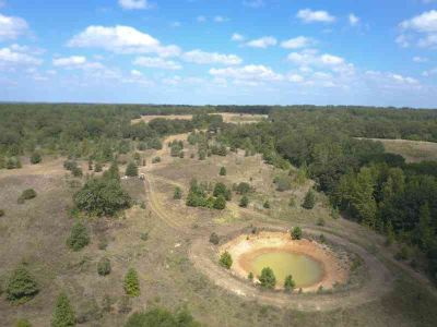 49 Freestone County Road 331 Oakwood, 50+/- acres with a