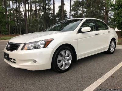 2010 Honda Accord EXL White
