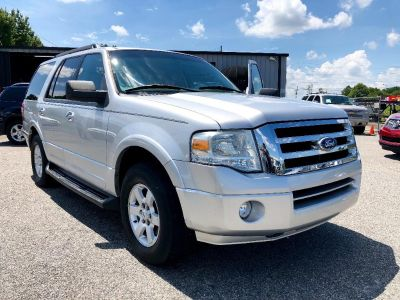 2010 Ford Expedition XLT (Silver Or Aluminum)