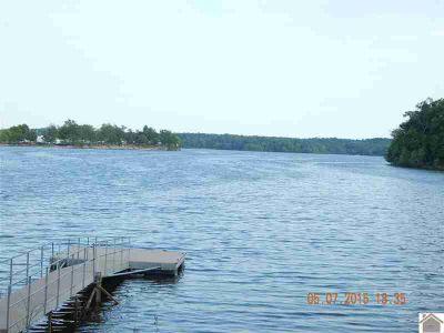 00 Buckhorn Bay Park Dr Gilbertsville, lakeview