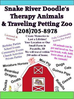 Traveling Interactive Petting Zoo for Hire