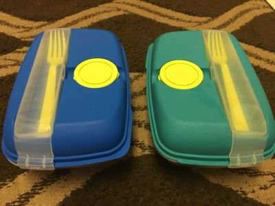 Set of two Togo containers with built in fork and sauce containers 6x10x41/2