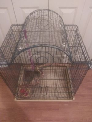 Medium-sized bird good condition has food dish water dish and a few toys