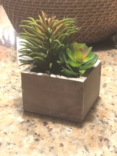 Artificial succulents in wooden planter