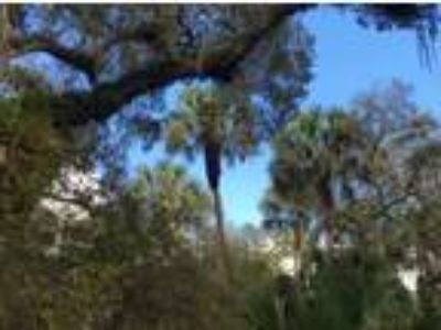 Land for Sale by owner in Inverness, FL