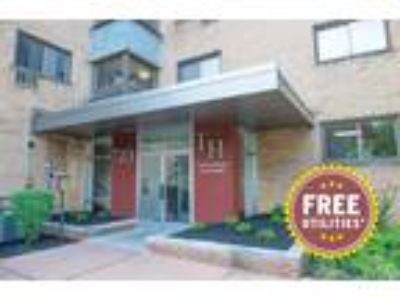 Towne House Apartments - One BR, One BA