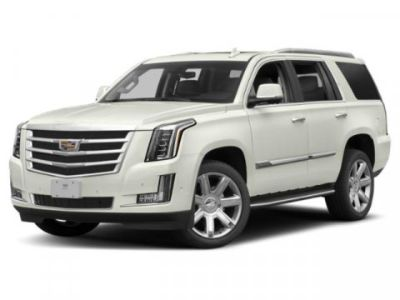 2019 Cadillac Escalade Luxury (Shadow Metallic)