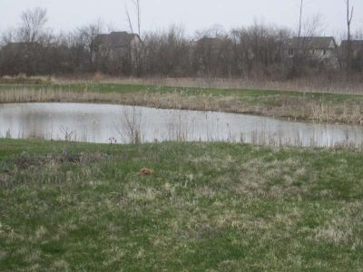 Waterfront lot - vacant building site