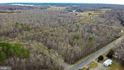 39141 Ledford Dr Clements, Have you been waiting for land??