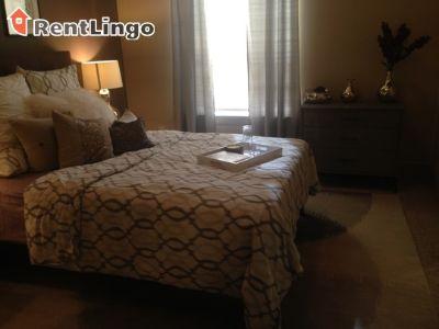 $1,260, 1br, Modern 1 bd/1.0 ba Apartment in Lynnwood