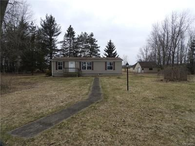 3 Bed 2 Bath Foreclosure Property in Lyndonville, NY 14098 - Murdock Rd