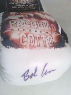 Signed in the sweet spot promotional boxing glove