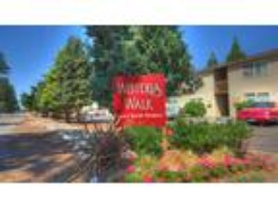 Wisteria Walk Apartments - One BR One BA