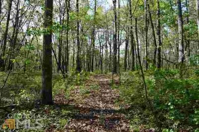 0 Pettyjohn Ln 130 Mount Airy, 11.57 Acres with small creek