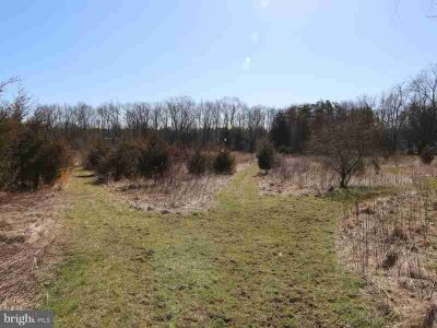 825 Locust Grove Rd Middletown, Londonderry Township parcel