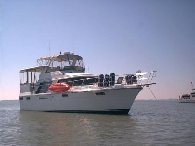 42 Carver Motor Yacht -1986 - Owner Finance Options