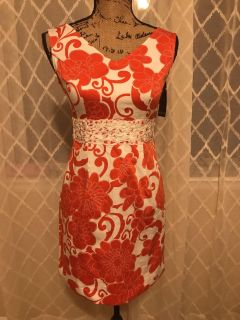 NWT Gorgeous fitted dress w/zip back.