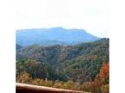 Luxury lodge in Pigeon Forge - hot tub, pool table, game room - Lodge