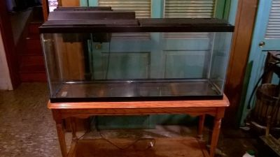 55 gallon aquarium with filter, heater and stand