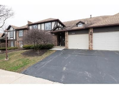 2 Bed 2 Bath Foreclosure Property in Willowbrook, IL 60527 - Brookside Ln Unit D