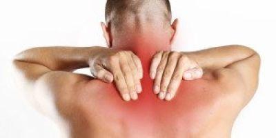 Back Pain Expert