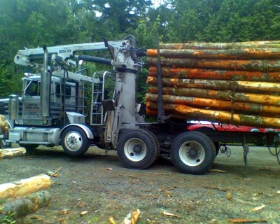 FIREWOOD CORDS SPLIT WOOD, FOR SALE LOGS TACOMA SEATTLE