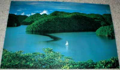 "Sailboat in Water - Vtg Poster - 1978 - 14"" x 21"" - Photo by Milt & Joan Mann - Unframed"