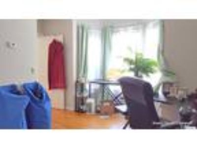 Sunny 2 Room Harvard Sq Studio 1 Block from the Charles! Heat Included