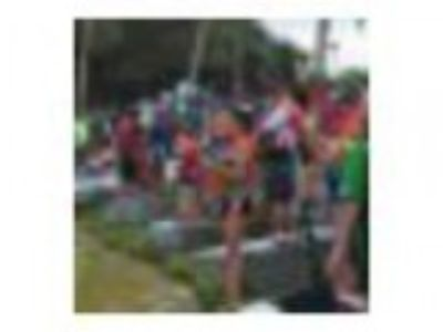 Lakeland Cardboard Boat Challenge and Lakes Festival
