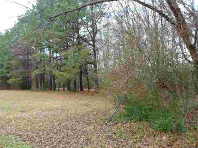 7564 Hatch Cir Bartlett, Nice wooded lot, over 4 acres and