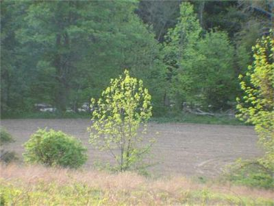 Land for Development in Schoharie, New York, Ref# 200314448