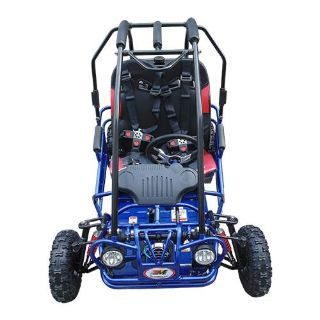 2017 Trailmaster Mini XRX-R Go Karts Howard Lake, MN