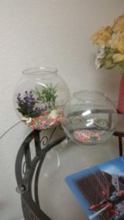 2 Fish Bowls -Gently used