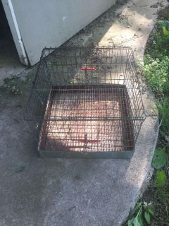 Animal carry cage